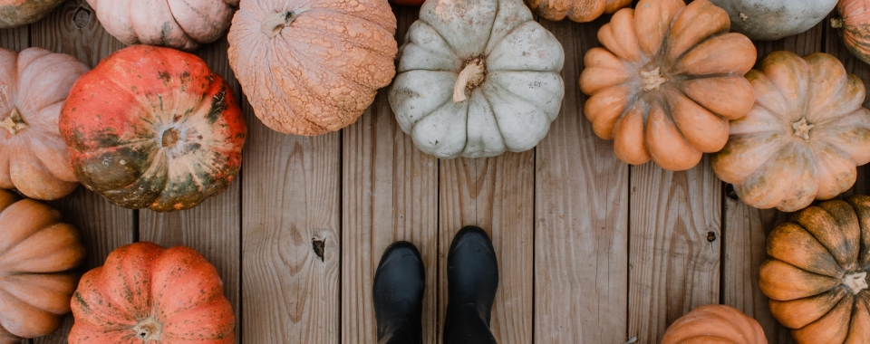 woman standing by pumpkins